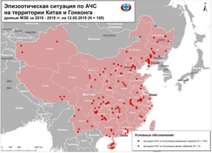 АЧС в Китае