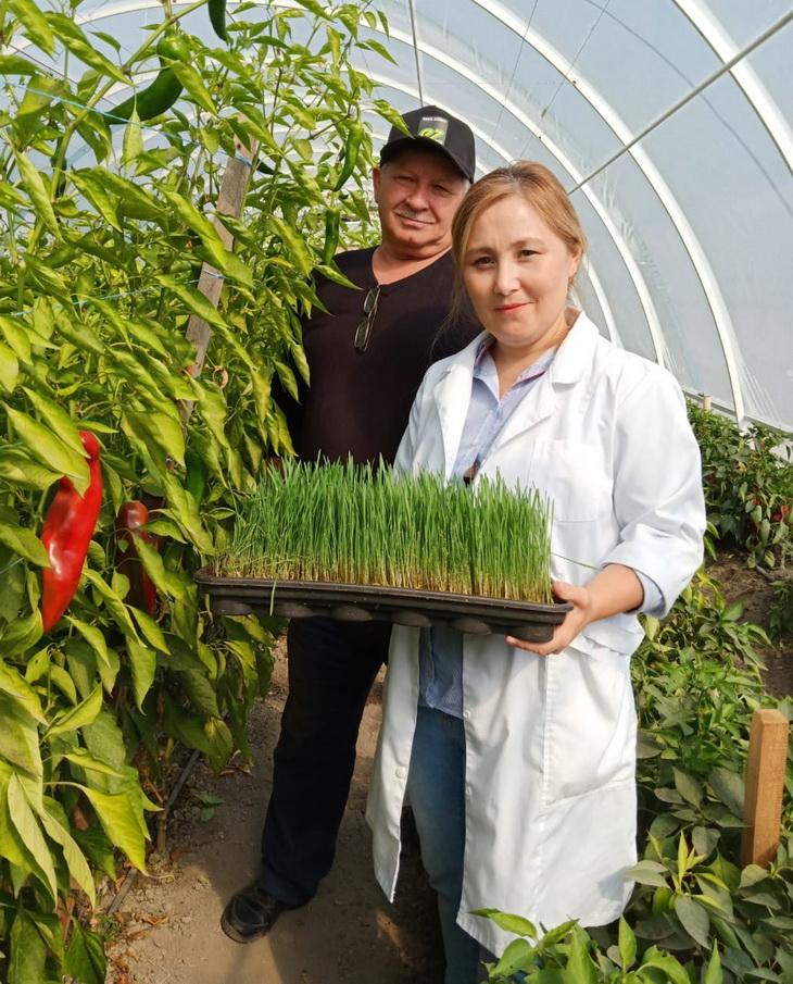 органические фермеры казахстана
