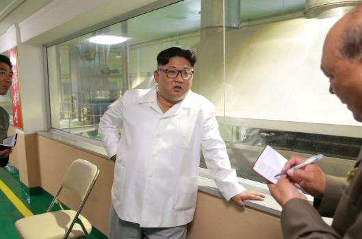 картофелеводство в северной корее