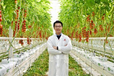 китайское овощеводство