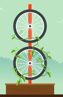 шпалера колесо