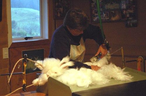 Изделия из пуха кролика