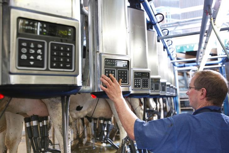 В Калужской области будет 100 роботизированных молочных ферм