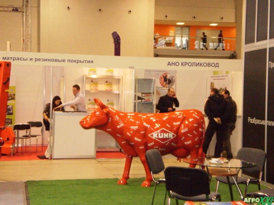 корова на выставке Агроферма