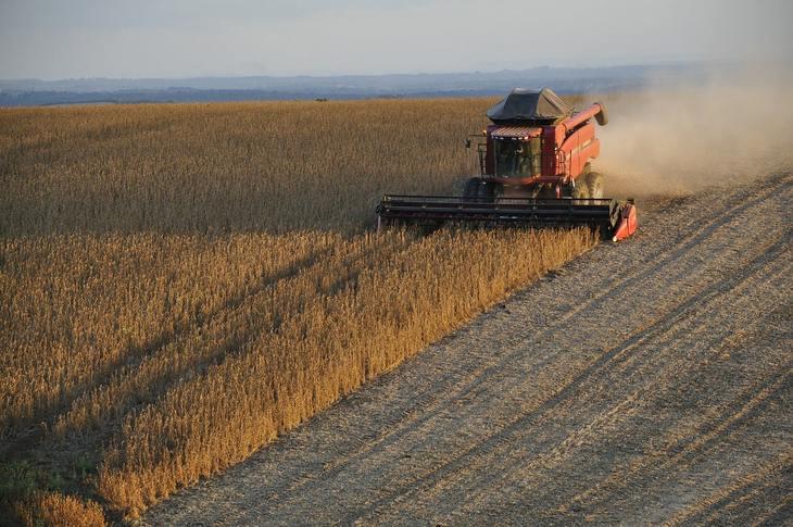 В Бразилии острая нехватка хранилищ для зерна на фоне рекордных урожаев