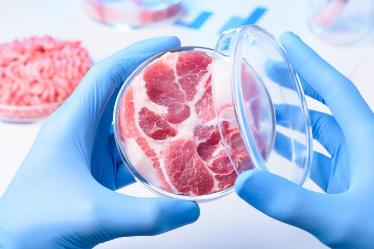 Производство и применение новых протеинов для питания людей - в центре внимания на Форуме «ПроПротеин-2021»