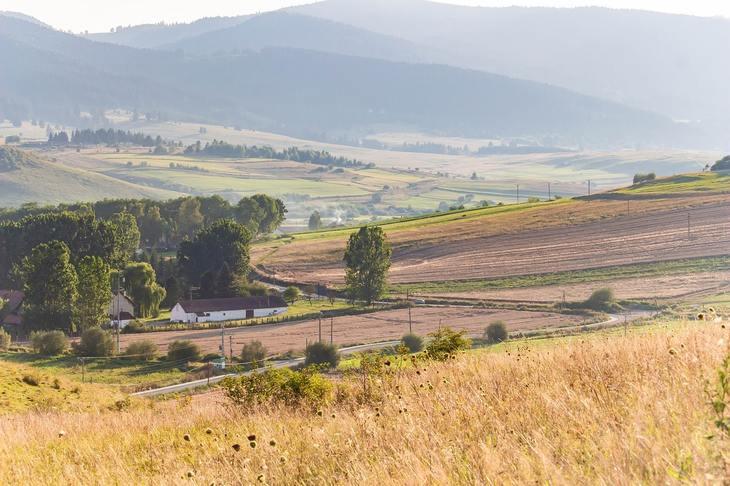 Румыния намерена войти в число европейских лидеров по производству зерна