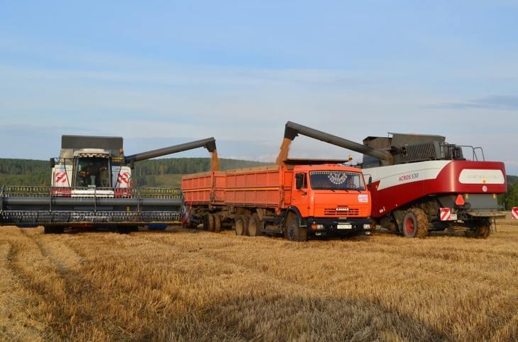 Первый миллион тонн зерна урожая 2021 уже в закромах Красноярского края