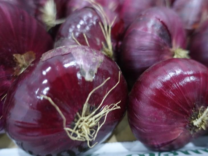 Аграрии Крыма собрали 110 тонн ялтинского лука