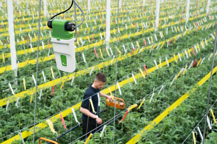 Разработчик из Нидерландов создал систему позиционирования для «умного» садоводства