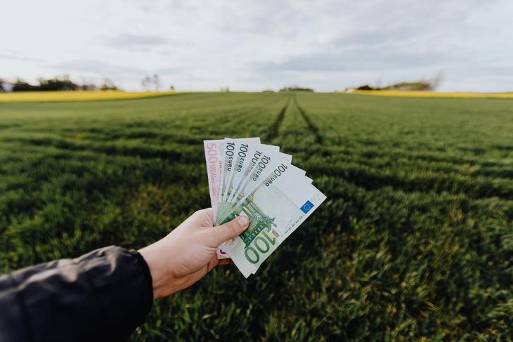 ООН признал дотации в аграрный сектор вредными