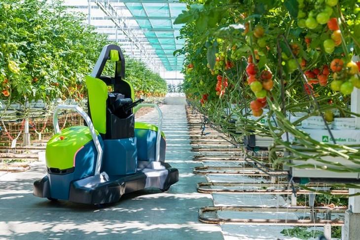 Компания Priva  разработала робота Kompano для обрезки листьев с томатов
