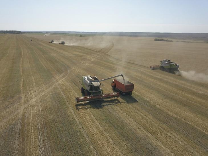 В Пензенской области в сельскохозяйственных предприятиях получено 2,1 млн тонн зерна
