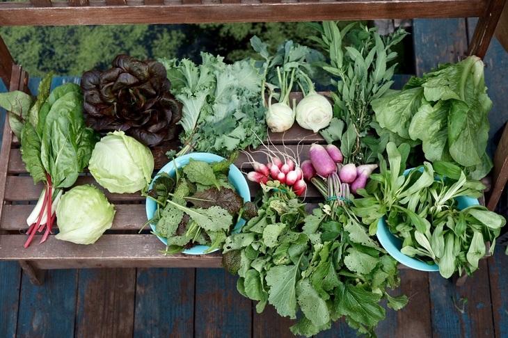 «Органическое питание детей и подростков вне дома» - семинар с международным участием