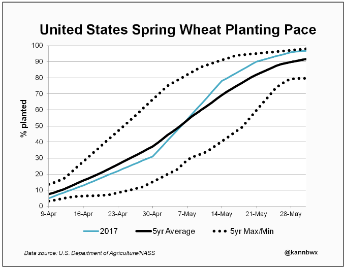 площадь пшеницы в США