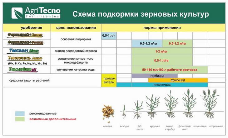 подросткам технология возделывания основных полевых культур на семена полный достоверный сайт