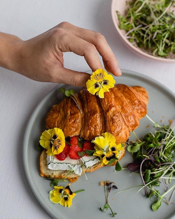 съедобные цветы агрохолдинг московский