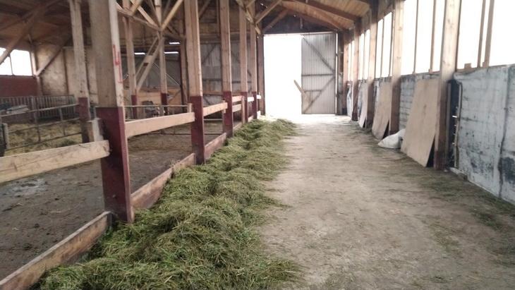 здание фермы кормовой стол